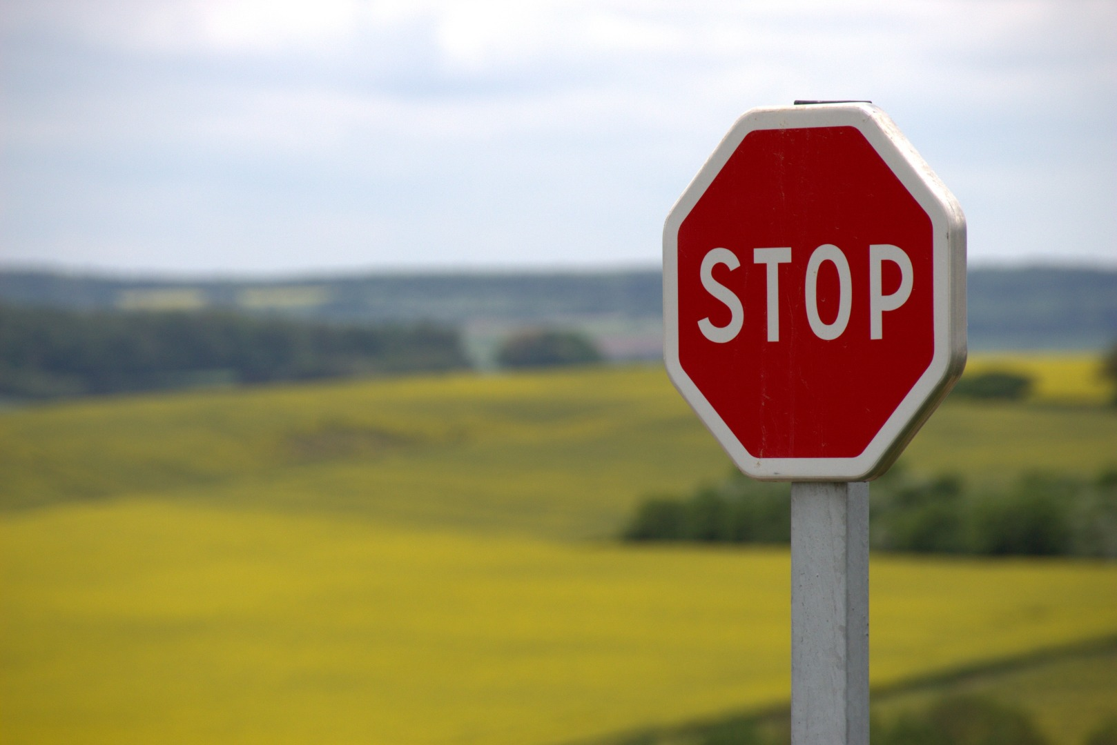 Stop shield traffic sign road sign 39080